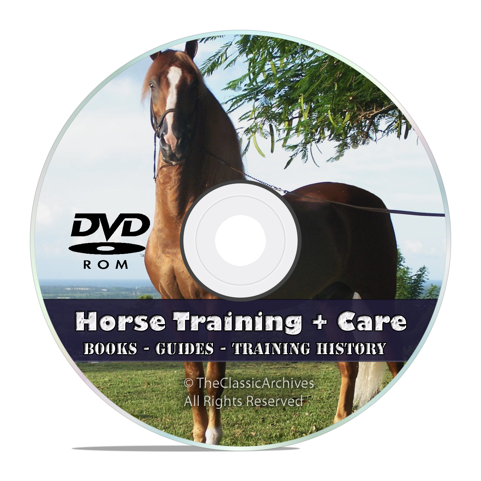 Classic How To Do Horse Training Taming Library, Make a Harness Guides DVD