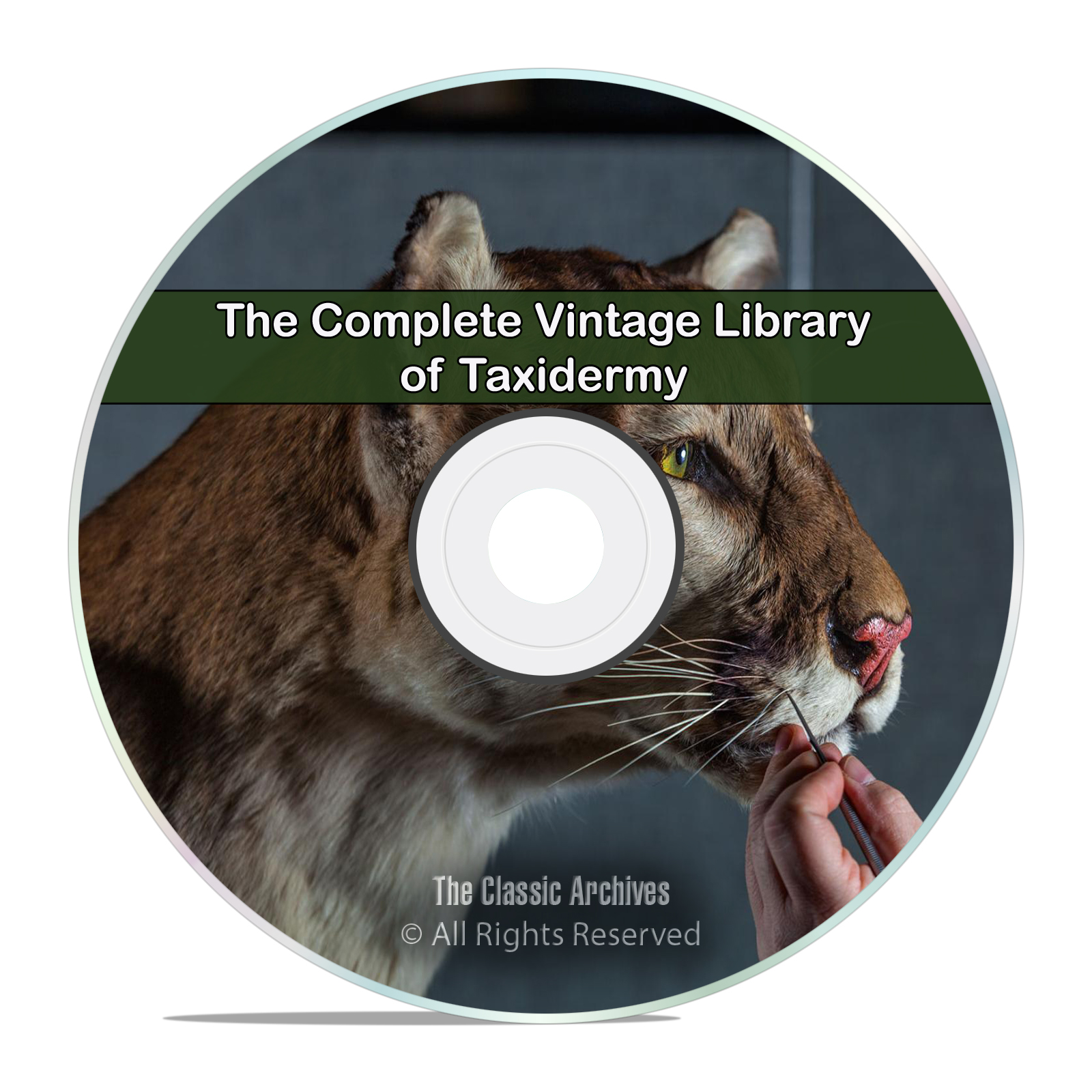 Library of Taxidermy, 66 Books, Mount Stuffing, Perserving Animals PDF DVD
