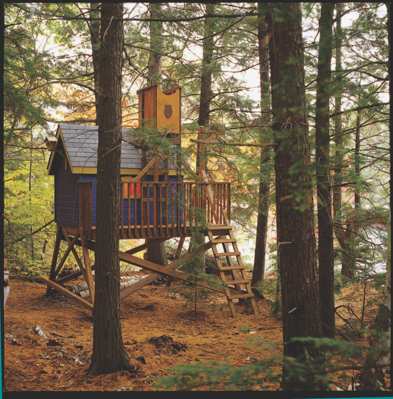 Free Tree House Look Out Tower Plans