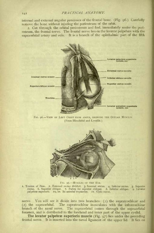 Embalming Books Library