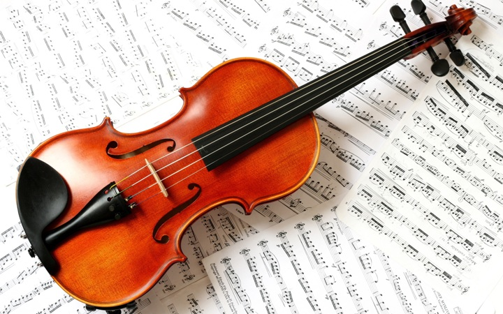 Introduction to the violin