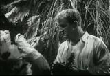 Tarzan's Revenge (1938) Feature Film Download 10
