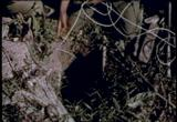 The Army Air Mobility Team 1965 movie download screenshot 30
