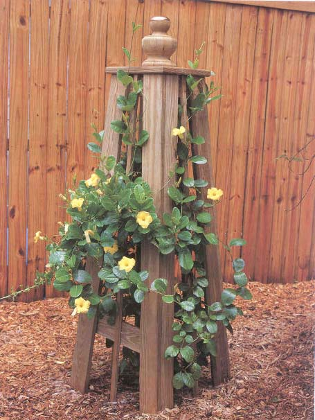 Vine Trellis wood working plans for download