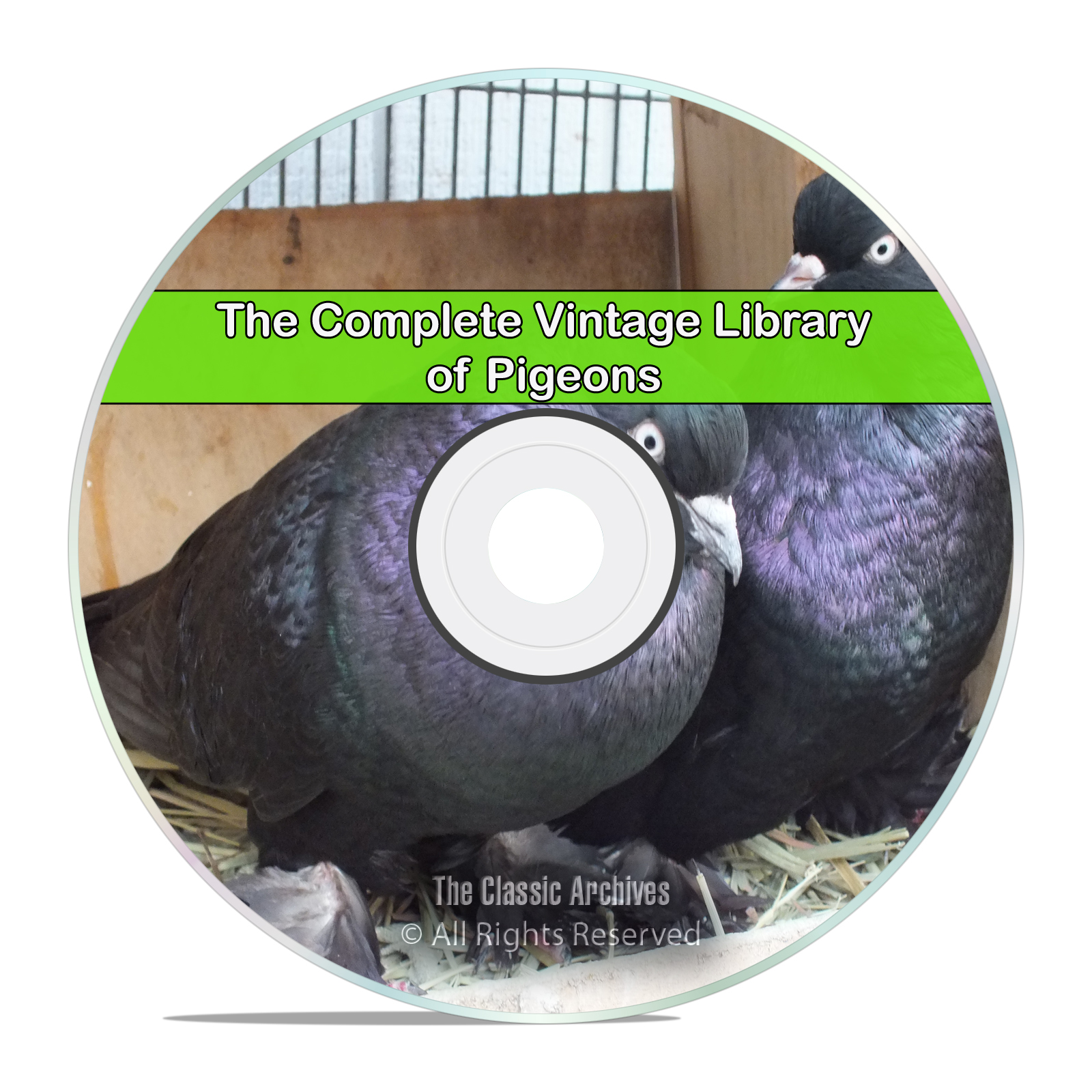 The Library of Pigeons, 60 Books, Raise, Profit Fancier Breed Squab, PDF CD